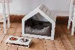 Лучшие породы собак для квартиры: топ-10 вариантов для смарт-апартаментов